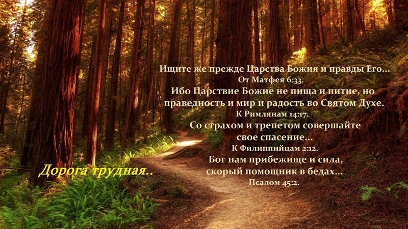 Дорога трудная, порой тернистая..