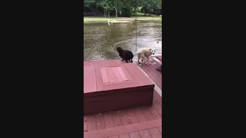 Наш человек в воде! Он непременно тонет!