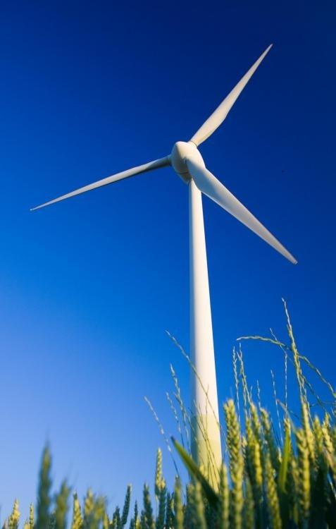 Индукционные генераторы обычно используются в ветровых турбинах.