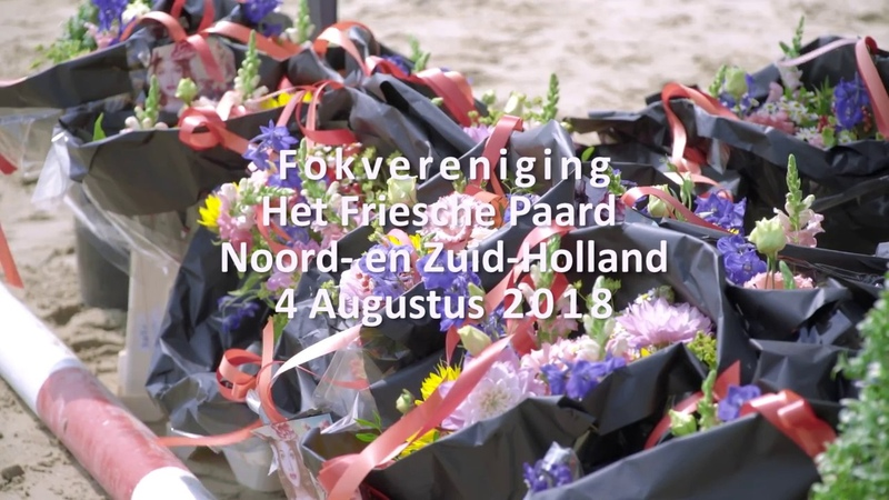 Fokdag Het Friesche Paard Noord- en Zuid-Holland