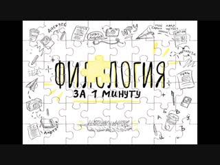 Филология за минуту (М.М.Бахтин) (480p).mp4
