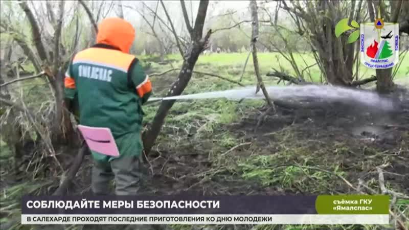 С пожаром на острове Татарском боролись 20 огнеборцев mp4