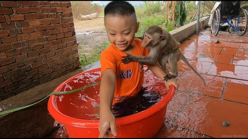 Em Bé Và Con Khỉ Bibi Tắm Rất Vui Nhộn   Mit Menly