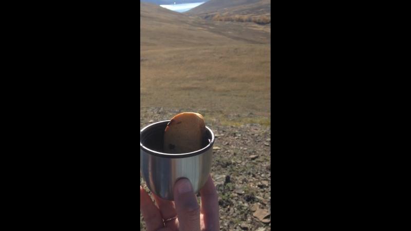 ☕️☕️☕️ Чашечка чая на вершине мира🌄