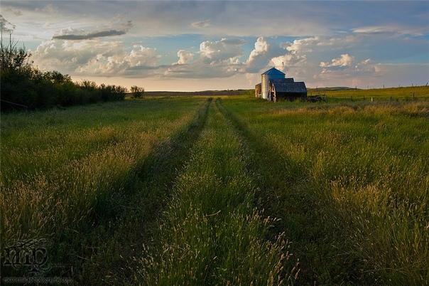 Профессиональный фотограф из Канады Шон Маккормик (Sean McCormic). Фотографию считает свои главным призванием в