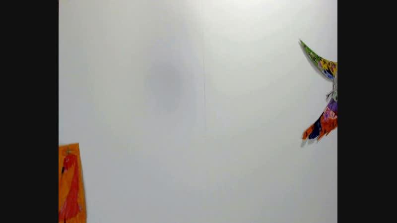 ПТИЦЫ И ЗВЕРИ. Мультэтюд в технике перекладки. Гр. 2А класс МОУ СОШ №2. 03.12.2018г. Хр. 1 мин. 05 сек