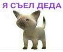 Богдан Кирса фото #9