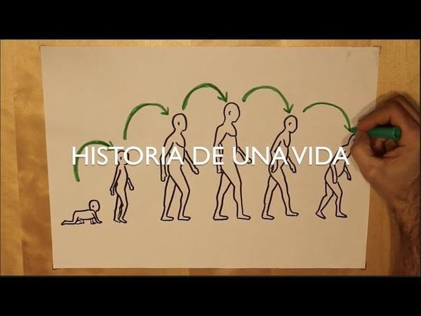 HISTORIA DE UNA VIDA (DESARROLLO HUMANO) EN 10 MINUTOS