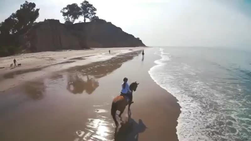 Horseman's paradise