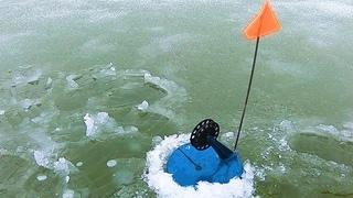 ДА ТАМ ОГРОМНАЯ!, БАГРИ ЕЕ БАГРИ! Зимняя Рыбалка на Жерлицы, Первый Лед 2018-2019.