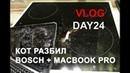 Как наказать кота, который убил MacBook Pro и индукцию Vlog. День 24.