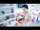 Свадебное видео о очаровательной паре