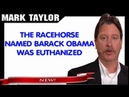 Mark Taylor Prophecy October 14, 2018 — THE RACEHORSE NAMED BARACK OBAMA WAS EUTHANIZED