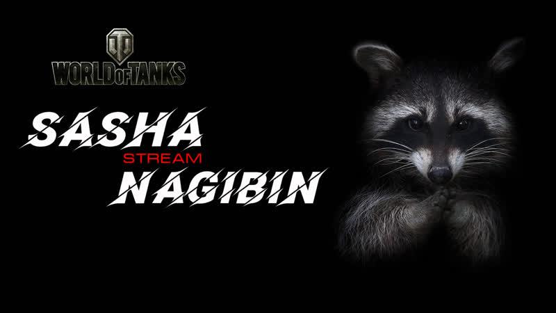 Sasha Nagibin Stream WOT
