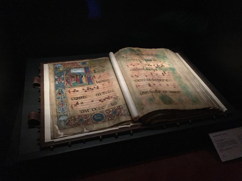 Приключения во Флоренции. Старинные книги