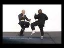 William cheung Wing Chun Kung Fu 2