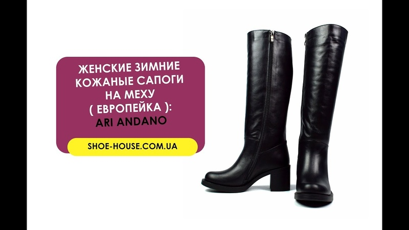Черные зимние женские кожаные сапоги ARI ANDANO на меху ( европейка )