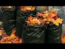 Поленья из опавших листьев как бизнес идея ноу хау
