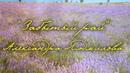 Забытый рай, Александра Людмилова