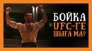 БОЙКА UFC-ГЕ ШЫҒА МА?