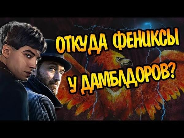Как Криденс и Дамблдор Заполучили Феникса