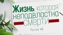 Жизнь которая неподвластна смерти Андрей Зубарев