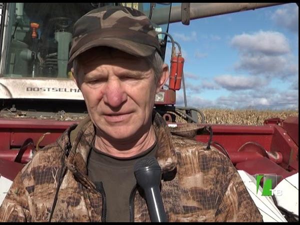 2018 10 13 Уборка кукурузы в хозяйстве Мяском