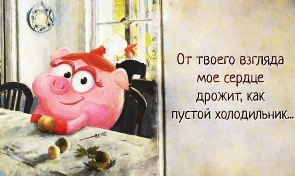 35 уроков жизни от Смешариков