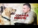 Собачья работа смотрите на Пятом канале