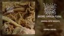Liquid Viscera - Oozing Curdled Fluids FULL EP 2018 - Goregrind