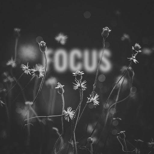 Deorro альбом Focus