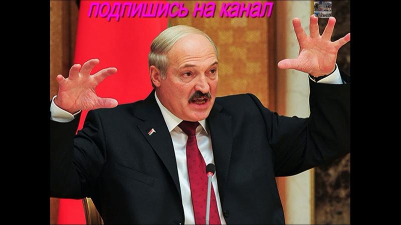 Берите пример с армян экс посол Польши в Белоруссии