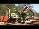 Amazing Powerful Wood Chipper Machine Modern Technology - Wood Processor Big Tree Shredder Easy