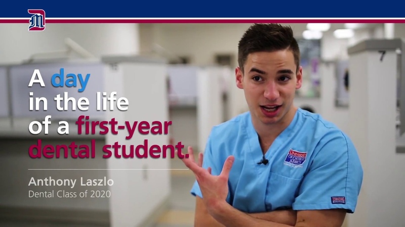 A Day in the Life of a First-Year Dental Student