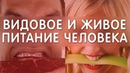 Видовое питание человека 9 причин болезней ч 2 Еда и Жизнь Фролов Ю А