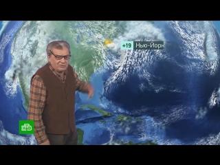Утренний прогноз погоды на 12 октября