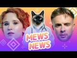 Mews News: КотоFAQ, Крид, Монеточка