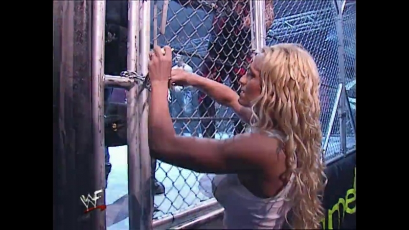 Brothers Of Destruction Vs DDP Kanyon - WCW Tag Team WWF Tag Team Championships - Tag Team Steel Cage Match - SummerSlam 2001