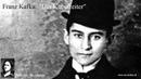 Franz Kafka Der Kübelreiter Sprecher Jan Lindner Hörbuch