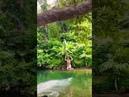 ПХУКЕТ КАО ЛАК Полет на тарзанке в заповеднике | Экскурсия экспресс джунгли слоны остров погода