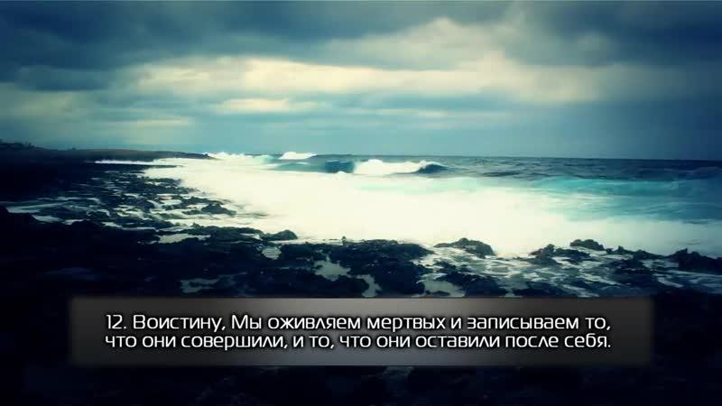 Красивое чтение суры 36 «Ясин». Якуб Насим. [HD]