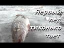 Первый ЛЁД тихонько тает. Рыбалка на красивом загадочном озере - Болен Рыбалкой №582