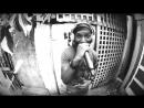 DUB FX ft Kabaka Pyramid Cant Breathe Dubplate