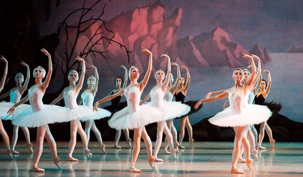 Разница между оперой и балетом Балет и опера два крупных театрально-музыкальных жанра. Попасть на многие из знаменитых театральных постановок мечтают меломаны в разных странах мира. И у балета,