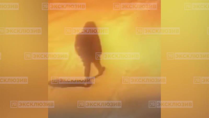 Насильник с дубинкой, напавший на женщину в Мурино, засветился на видеозаписи камер наблюдения