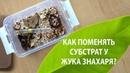 Как поменять субстрат у жука знахаря Советы по разведению кормовой культуры от Юлии Антс