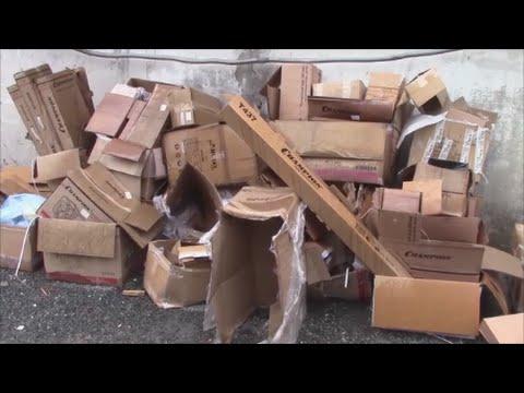 АТ53 Переработка картона червями Старатель Видео №1 Дендробена Калифорнийские черви