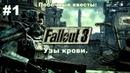 Fallout 3 Побочные квесты Узы крови 1