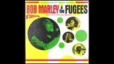 Bob Marley + The Fugees - You Can't Stop the Shining (Full Album) | David Begun