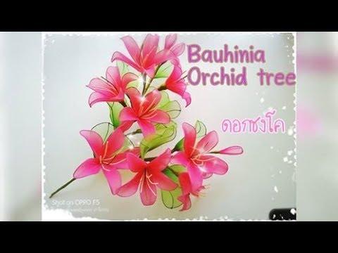 ดอกชงโค (bauhinia orchid tree) How to make nylon/stocking flower by ployandpoom ผ้าใยบัว